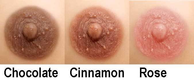 Aphrodite Nipple Colour options