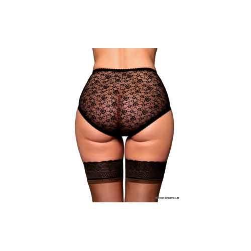 lacey sheer retro panties